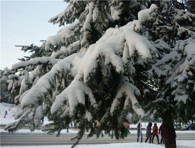 Зимняя сказка на наших фотографиях - Страница 2 2fabadd25fe5