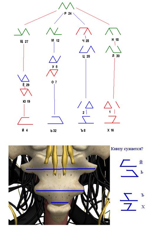 Классификация рун на основании метода дополнений. 2e01c969d843