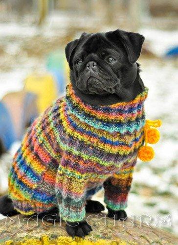 Magic Charm - ошейники, поводки, ринговки, вязаная одежда и другие аксессуары для собак 9db7ed278e28