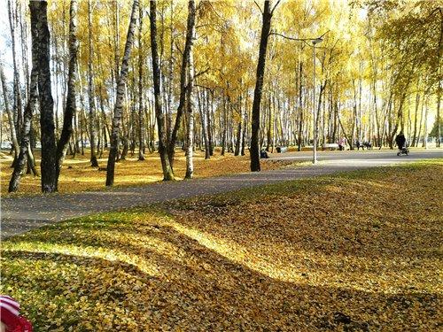 Осень, осень ... как ты хороша...( наше фотонастроение) - Страница 7 C6d4e16a6882