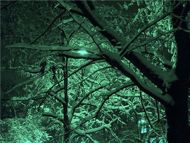 Зимняя сказка на наших фотографиях - Страница 5 7e155e179f5c