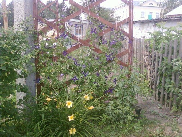 Ландшафтный дизайн... Сделаем свой сад самым красивым! - Страница 4 E4030d3bb828