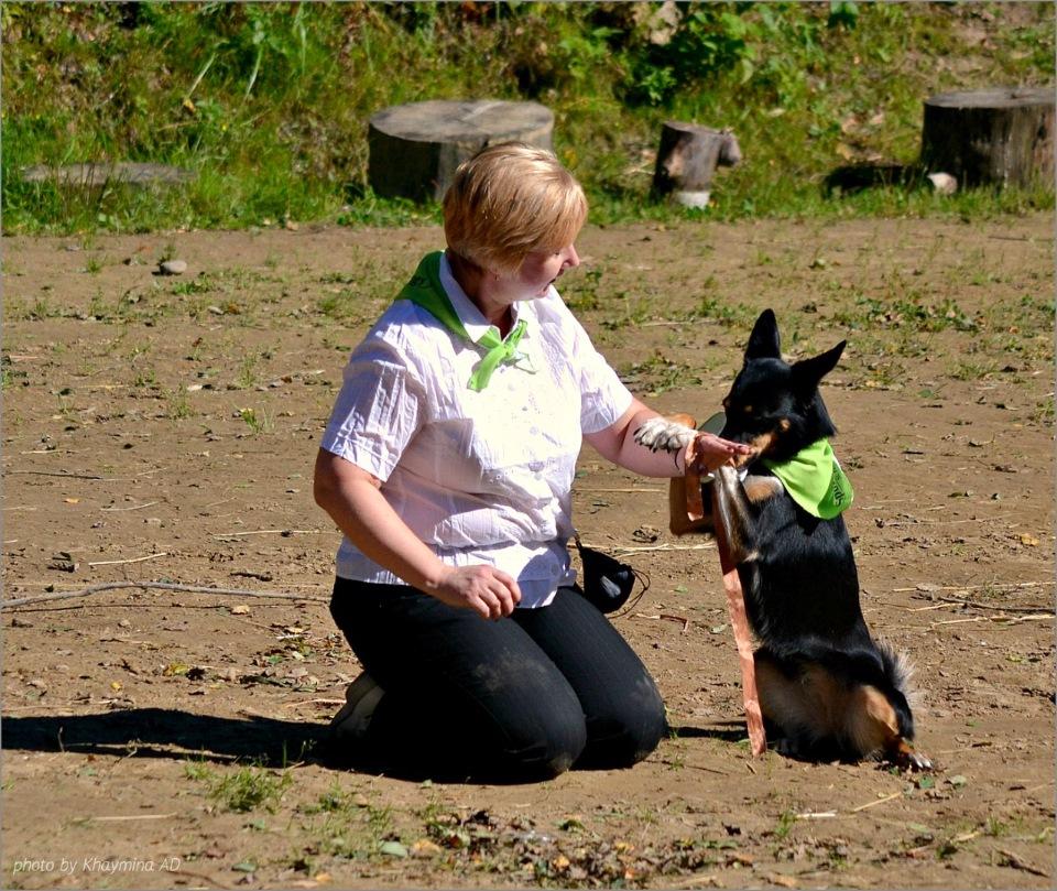 Танцы с собаками - Страница 3 E4bac0389700
