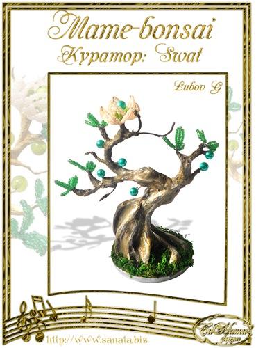 """Галерея """"Mame-bonsai"""" 0f1c7fb31e40t"""