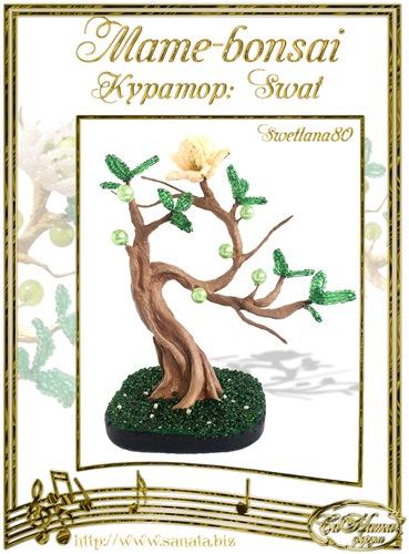 """Галерея """"Mame-bonsai"""" C23ac573916ft"""