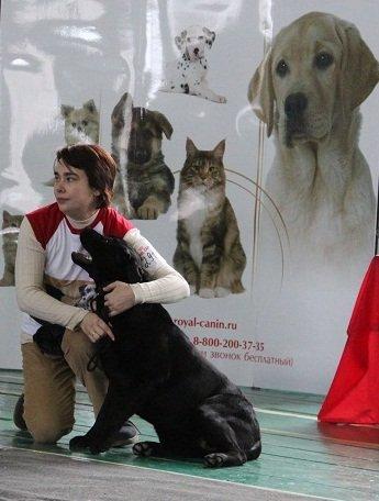 """Питомник """"Прима Персона"""". Мои собаки-моя жизнь! 491ef420ccac"""