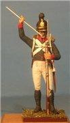 VID soldiers - Napoleonic wurttemberg army sets 1492afa88ccft