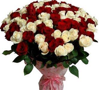 Поздравляем с Днем Рожения Елену (Белка7) 346cb3b76a3ft