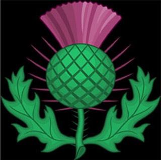 Символ: чертополох F78810f3223f