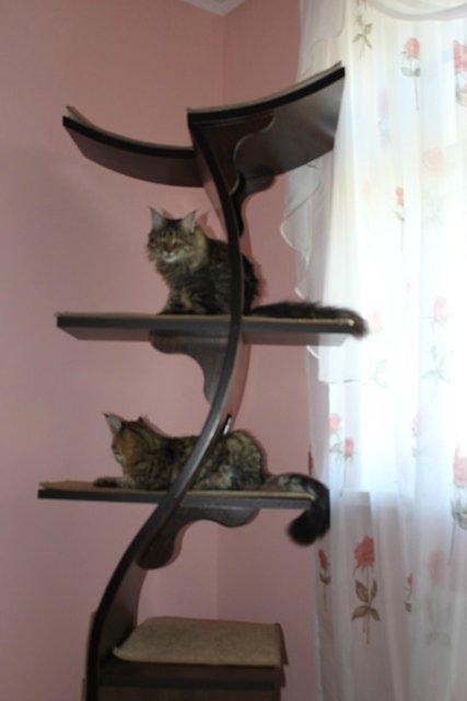 Мебель для животных 029856e48ac8