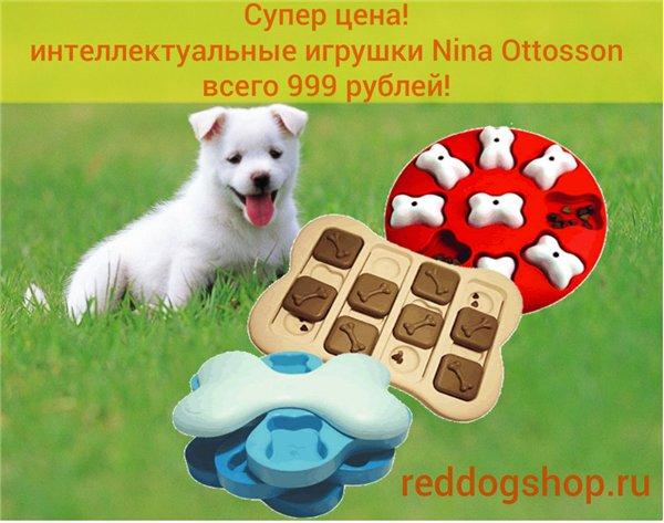 Интернет-зоомагазин Red Dog: только качественные товары для  - Страница 7 61ad8f5eaf56