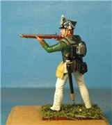 VID soldiers - Napoleonic russian army sets E1a65cd9645ft