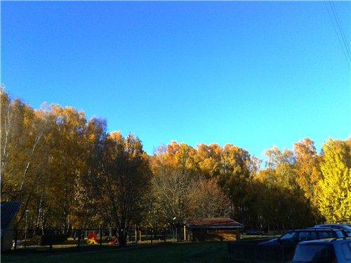 Осень, осень ... как ты хороша...( наше фотонастроение) - Страница 7 D0fcb967a872