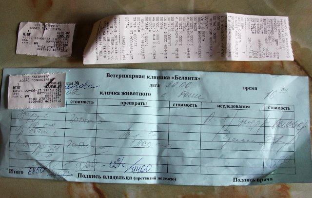 Москва, Рони, кобель боксера, 5 лет  - Страница 5 0b799543f703