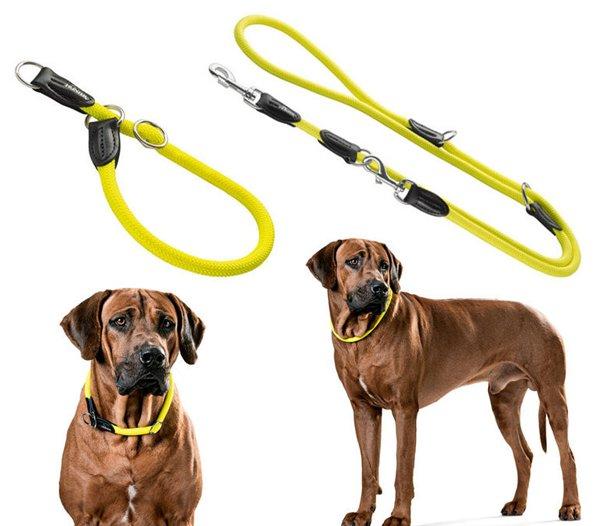 Интернет-зоомагазин Red Dog: только качественные товары для  - Страница 7 71541523c7fb