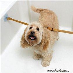 Интернет-зоомагазин Pet Gear - Страница 8 D52533a8c4ab