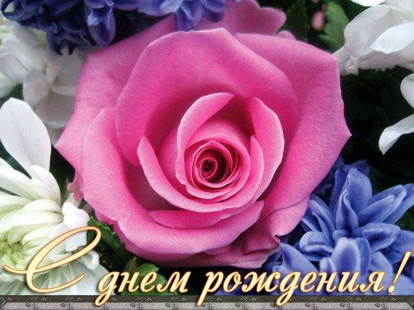 Поздравляем  Олю-Lyolik, Лилю-Кувшинку, Лилю-Маму сынишки с ДНЕМ РОЖДЕНИЯ!!! - Страница 2 597501167cdc
