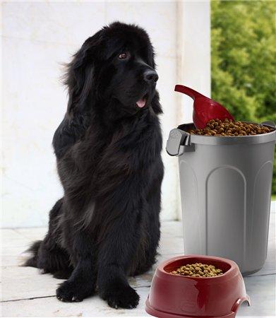 Интернет-зоомагазин Red Dog: только качественные товары для  - Страница 5 87fdee05c4cf