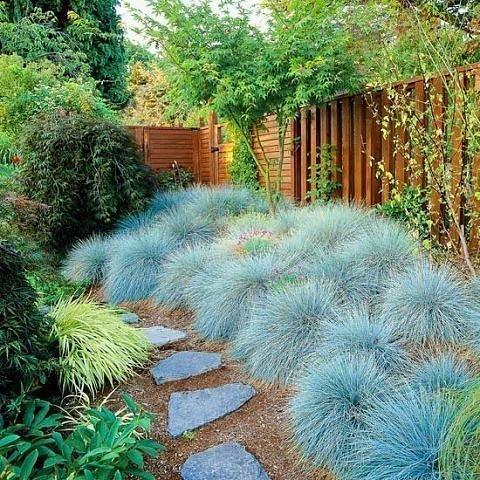 Садово-огородный дизайн  - Страница 17 6d7d8e7b826et