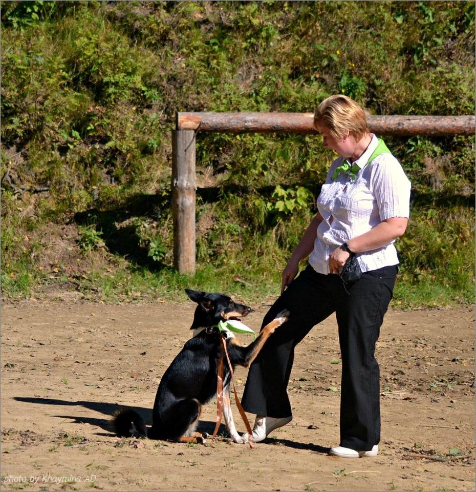Танцы с собаками - Страница 3 0bb68a1bdab5
