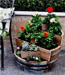 Садово-огородный дизайн  69db7c1edec1t