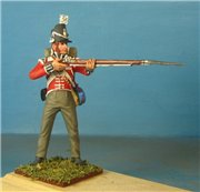VID soldiers - Napoleonic british army sets 4e3bfc705846t