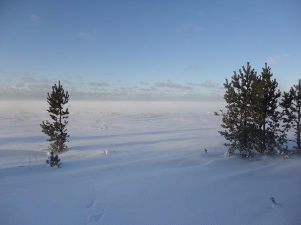 Белое море - вот ты какое.... - Страница 12 7bc3301ed996