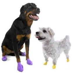 Интернет-зоомагазин Pet Gear - Страница 2 D45e80c4b730