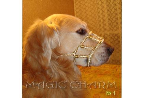 MAGIC CHARM - обереги, ошейники, украшения, ринговки и другие аксессуары для  собак и кошек. 7e191be568c0