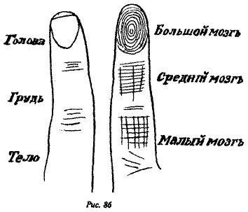 Хирософия линий и знаков 1d51fe72f38b