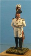 VID soldiers - Napoleonic russian army sets 20c465558ed9t