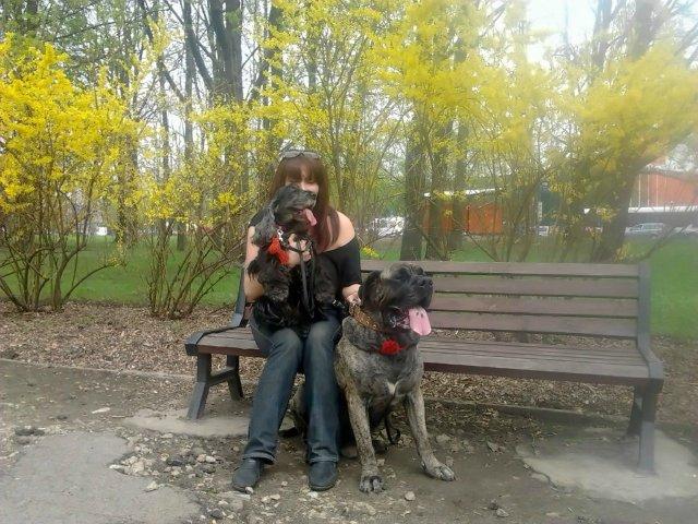 Наши собаки, друзья и гости, кот Мензурка - Страница 32 8b5863c47c0c