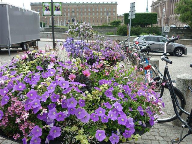 В Стокгольм по Балтийскому морю 8beb748462b1