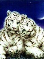 Животные E0b12e3dfe0e
