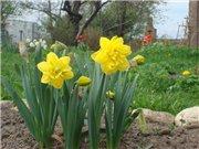 Весна идёт... - Страница 2 E7080d69cd32t