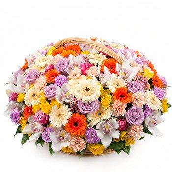 Поздравляем с Днем Рождения Янину (Янчето)! 65d982e65b35t