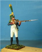 VID soldiers - Napoleonic french army sets 251f86a70e68t