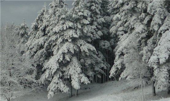 Зимняя сказка на наших фотографиях - Страница 6 0d669c607cb6