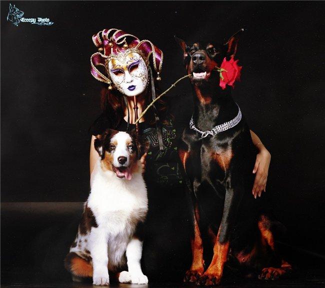 Marrandi Twilight Blaze & Marrandi Dival - Страница 4 F56f61ce7491
