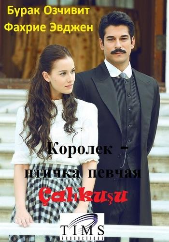 Королек птичка певчая / Calikusu/Çalikusu/все фильмы 1bc573dd3dbd