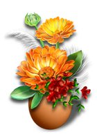 Поздравляем с Днем Рождения Ольгу (Oleyka) 31b643f4cdfat
