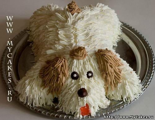 Собачьи кулинарные рецепты 4e50146d44e9