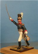 VID soldiers - Napoleonic wurttemberg army sets 22bb0e7eea72t