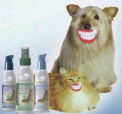 Интернет-зоомагазин Pet Gear - Страница 3 552304ed5312
