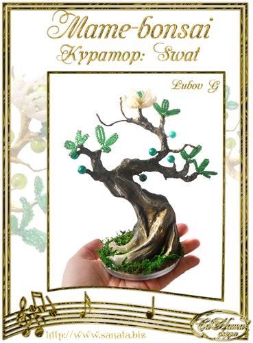 """Галерея """"Mame-bonsai"""" F8e1cb6e69f9t"""