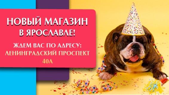 Интернет-магазин зоотоваров Счастливый Питомец D9585ae1c197