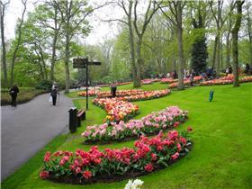 Рай тюльпанов или Кёкнхов - 2012 E1e73d7b6f4at