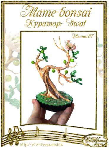 """Галерея """"Mame-bonsai"""" 9007346d2692t"""