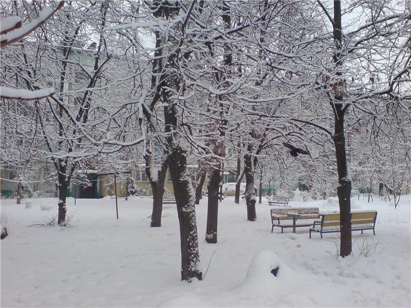 Зимняя сказка на наших фотографиях - Страница 14 24c1b57b78cf