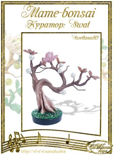 """Галерея """"Mame-bonsai"""" 707a4fc86ef0t"""